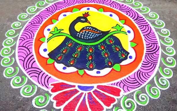 peacock rangoli design simple amp beautiful peacock